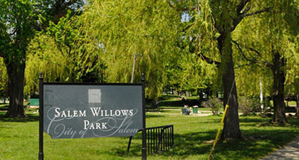 Salem Willows