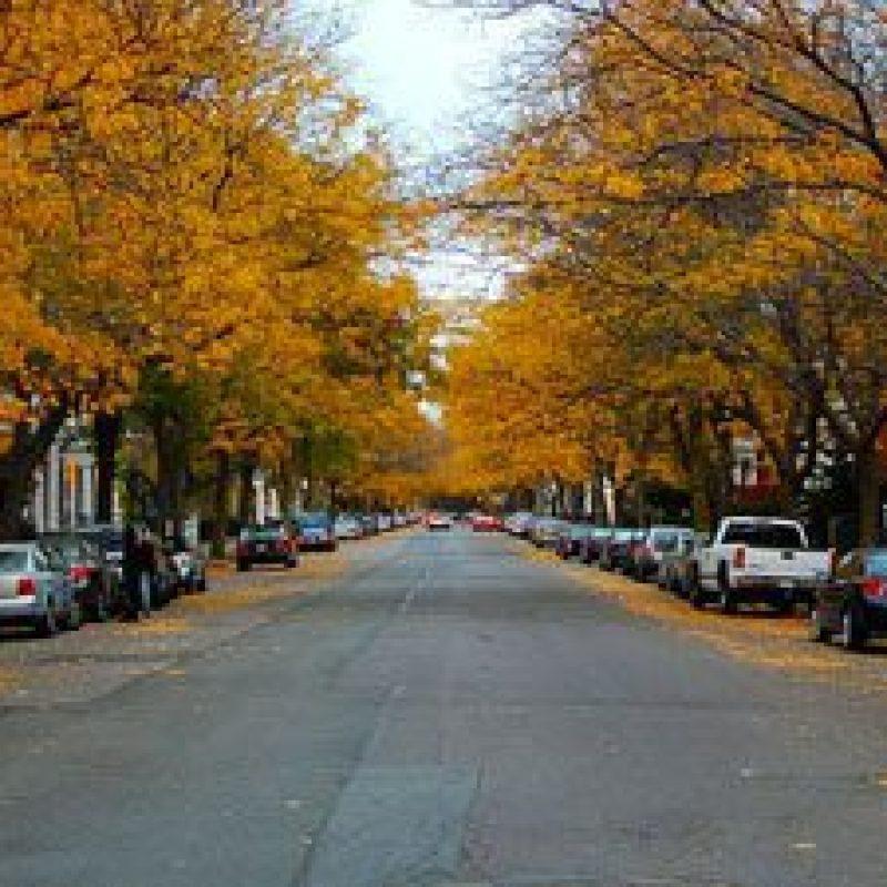 Chestnut Street Historic District