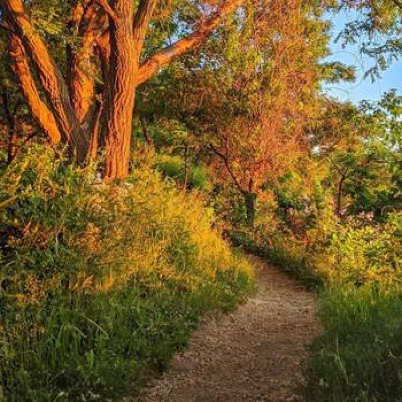 nature trail, Photo by Ty Hapworth, @hellosalem
